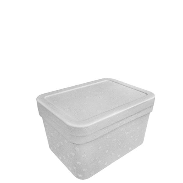 Caixa Térmica Isopor Isofort 2 L