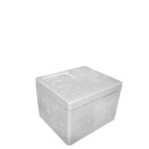 Caixa Térmica Isopor 1000 grs